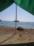 Our favorite piece of gear. The tarp provides plenty of shade in our trips.