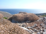 Looking NE towards the Aegean